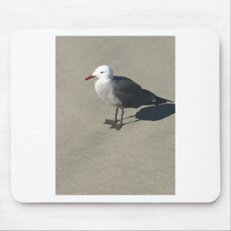 Seagull on Sandy Beach Mouse Pad