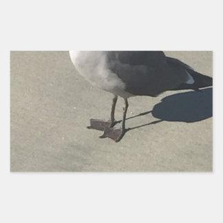 Seagull on Sandy Beach Rectangular Sticker