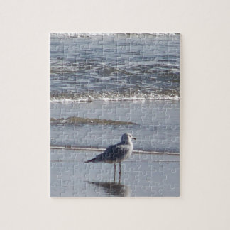 Seagull On The Beach at low tide on east coast Jigsaw Puzzle