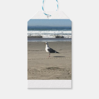 Seagull on the Beach Gift Tags