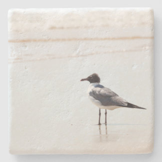 Seagull on the Beach Limestone Coaster