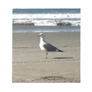 Seagull on the Beach Notepad