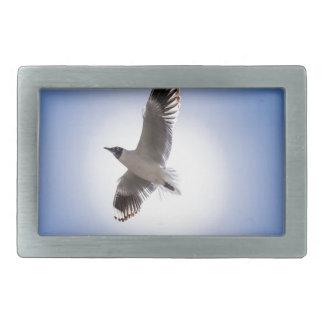 seagull rectangular belt buckles