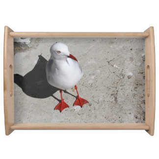 Seagull Serving Tray