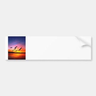 Seagull Sunset - Flying Gulls at Sunset Bumper Sticker