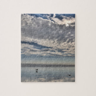 Seagull Walking on the Beach Puzzle