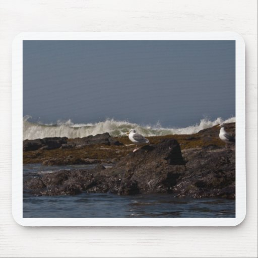 Seagulls and Surf Mouse Pad