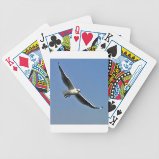 Seagulls are beautiful birds bicycle playing cards