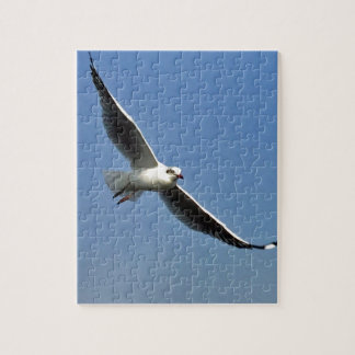 Seagulls are beautiful birds jigsaw puzzle