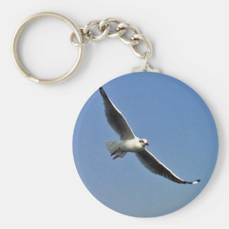Seagulls are beautiful birds key ring