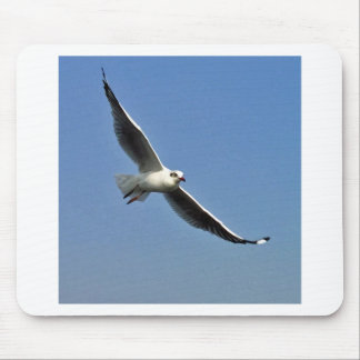 Seagulls are beautiful birds mouse pad