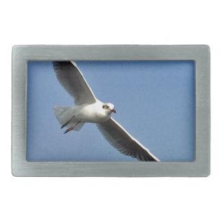 Seagulls are beautiful birds rectangular belt buckle