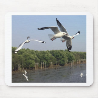 Seagulls at the beach mouse pad