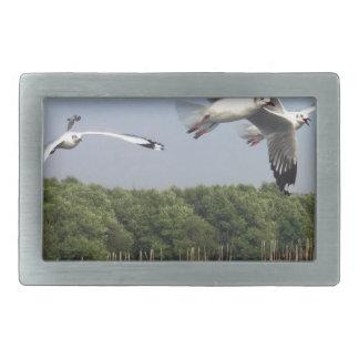 Seagulls at the beach rectangular belt buckle