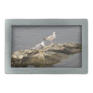 Seagulls Belt Buckle