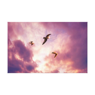 Seagulls flying in a sunset sky canvas print