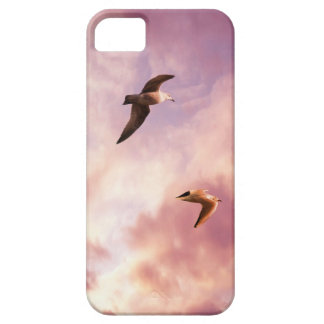 Seagulls flying in a sunset sky iPhone 5 case