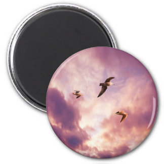 Seagulls flying in a sunset sky magnet