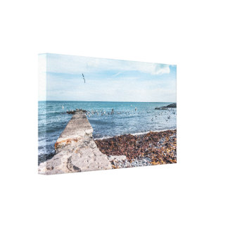 Seagulls flying over the bay canvas print