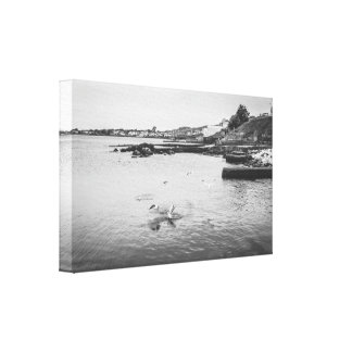 Seagulls flying over the ocean canvas print