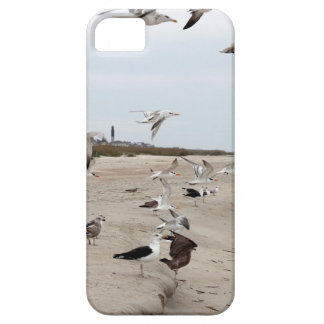 Seagulls Flying, Standing and Eating on the Beach iPhone 5 Cover