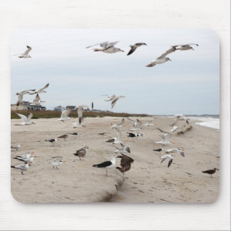 Seagulls Flying, Standing and Eating on the Beach Mouse Pad
