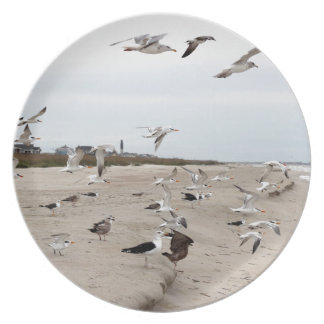 Seagulls Flying, Standing and Eating on the Beach Plate
