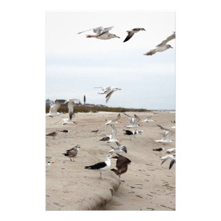 Seagulls Flying, Standing and Eating on the Beach Stationery