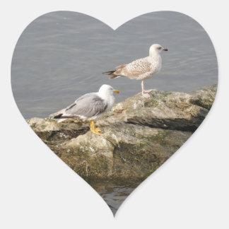 Seagulls Heart Sticker