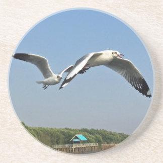 Seagulls in Flight Coaster