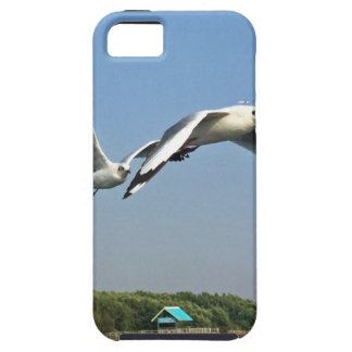 Seagulls in Flight iPhone 5 Covers