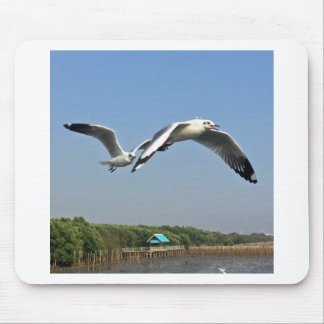 Seagulls in Flight Mouse Pad