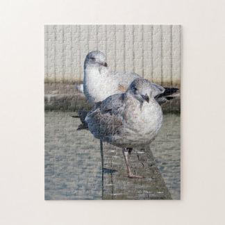 Seagulls Jigsaw Puzzle
