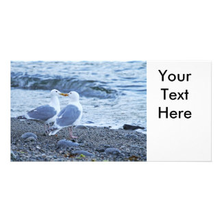 Seagulls Kissing on the Beach Photo Photo Greeting Card
