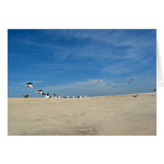 Seagulls on Beach Birthday Card w Bible Verse2