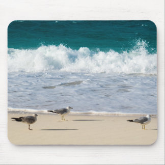 Seagulls On The Beach Mouse Pad