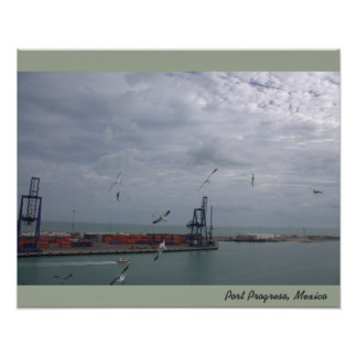 Seagulls Over Port of Progreso Mexico Poster