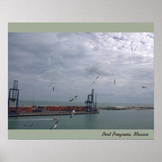 Seagulls Over Port of Progreso Mexico Poster