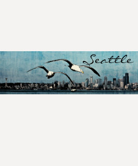 Seagulls Over Seattle Ladies Raglan 3 4 sleeve T Tee Shirt