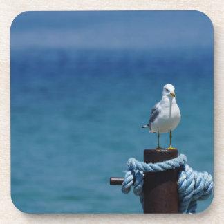 Seagulls Paradise At Mackinac Coaster