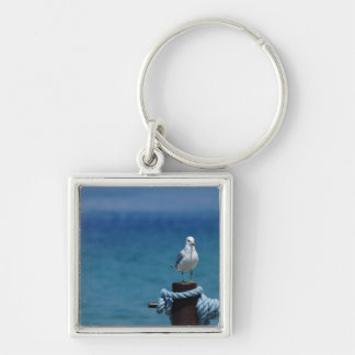 Seagulls Paradise At Mackinac Key Ring