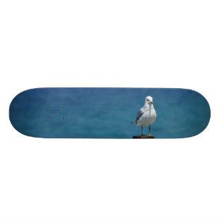 Seagulls Paradise At Mackinac Skate Board Decks