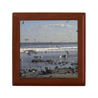 Seagulls & Shells Wooden Box