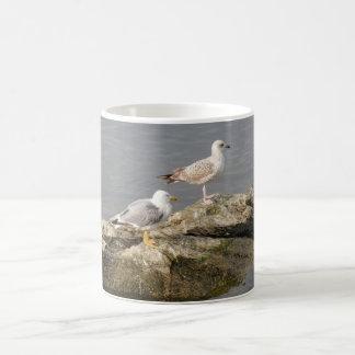 Seagulls White Coffee Mug