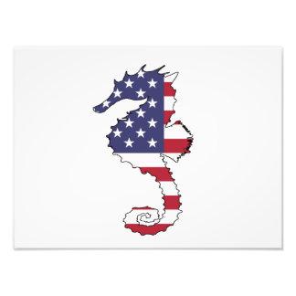 "Seahorse ""American Flag"" Photo Print"