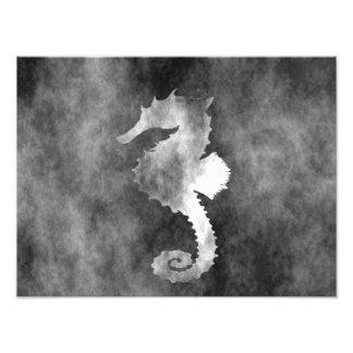 Seahorse Art Photo