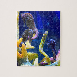 Seahorse Jigsaw Puzzle