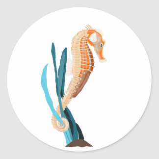 Seahorse tethered on Seaweed Classic Round Sticker