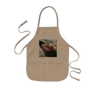 Seal apron