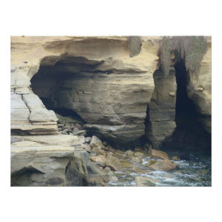 Seal Beach Caves Poster